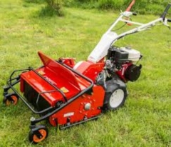 Rental store for MOWER HIGH WEED BRUSHCUTTER in Banner Elk NC