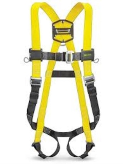 Rental store for SAFETY HARNESS W LANYARD in Banner Elk NC